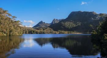 AUSTRALIA DRIVE & DREAM: VIDA SALVAJE DE TASMANIA